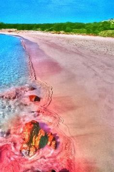 Pink Beach ~ Dreamy Nature