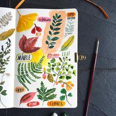 Leaf Botanical close up. #botanicalgarden #watercolor #botanical #botanicalart #botanicalillustration #carolyngavinsketchbook #carolyngavin #leaves