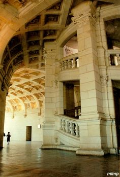 Château de Chambord ~ Loire Valley ~ France ~ Leonardo da Vinci's stairs in the château. The stairs intertwine, so that you can go up one set and another person go up the other and you will never meet.