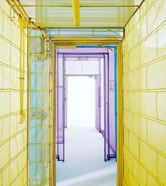 A casa di Suh | #DoHoSuh è un artista coreano che ama rivoluzionare gli spazi. Per Passage/s alla #VictoriaMiroGallery ha realizzato fragilissime installazioni architettoniche in cui mescola i luoghi dellanima ai posti visitati. Ne nascono fragili sculture da attraversare che svelano in modo scenografico la sua intimità (fino al 18/3). #MCart #mCMood #victoriamirogallery #Corea #robertindiana #Corean  via MARIE CLAIRE ITALIA MAGAZINE OFFICIAL INSTAGRAM - Celebrity  Fashion  Haute Couture…