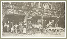 A group from the Glazier General Store with patrons. Norwalk California, Southern California, San Luis Obispo County, California History, City Of Angels, Gold Rush, General Store, Old West, Vintage Pictures