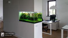 simonsaquascapeblog: Photography: aquascapes and interior design My ideal office space! Photo credit by Marcin Wnuk #aquarium #aquascapeおぉ!収まりいいな!...どうやっって掃除すんだろ??^^;
