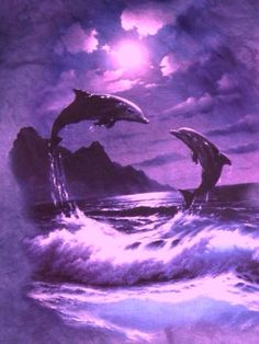 How beautiful the dolphins in purple ...
