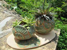 Resultado de imagen para jardines con plantas suculentas
