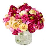 Found it at Wayfair - Assorted Ranunculus Flower Water Pot