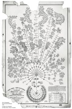 This beautiful chart represents something paradoxically prosaic: the division of administrative duties in the New York and Erie Railroad's departments, 1855.  Library of Congress.