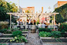 a summer dinner at Big Delicious Planet's urban farm in Chicago's west town Greens Restaurant, Farm Restaurant, Green Farm, West Town, Farm Gardens, Urban Farming, Garden Beds, Vegetable Garden, Organic Gardening