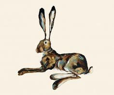 CR  Cute Hare! I love the originality of it and the colors!