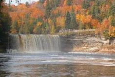 Tahquamenon Falls State Park, on MI-123, 20 miles west of Paradise, 25 miles north of Newberry, on the east end of the U.P.