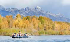 Scenic river rafting on the Snake River, Jackson Hole.  Once as a child, once as an adult with children.  Cooper fell asleep from the fresh air and rocking of the raft.