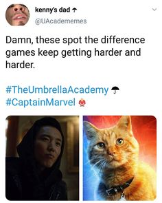 THANK YOU TO WHOVEVER MADE THIS IVE BEEN WANTING TO MAKE THIS FOR A WHILE AAAA Marvel Now, Captain Marvel, Marvel Dc Comics, Umbrella Company, Under My Umbrella, Fandoms Unite, Marvel Memes, Marvel Cinematic Universe, Umbrellas
