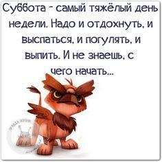 Прикольные фразочки в картинках №111014 » RadioNetPlus.ru развлекательный портал
