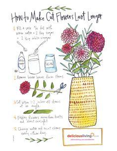 How to make cut flowers last longer - Delicious Living Cut Flower Food, Cut Flower Garden, Flower Farm, Love Flowers, Fresh Flowers, Beautiful Flowers, Cut Garden, Flowers Last Longer, Flower Stands