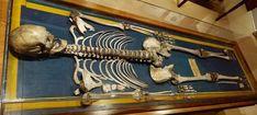 La historia del mundo en el Museo de Antropología de Madrid