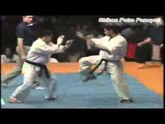 kyokushin karate fast knockouts