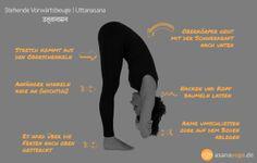 Uttanasana Vorwärtsbeuge im Yoga