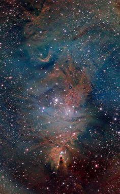 The Cone and Foxfur Nebulae (NGC 2264) Credit: Larry Van Vleet