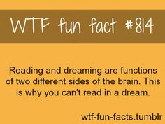 dreaming facts    MORE OF WTF-FUN-FACTS are coming HERE  funny and weird facts ONLY