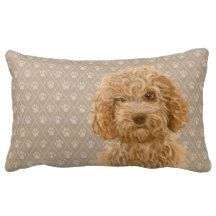 Check out all of the amazing designs that Labradoodle Love™ has created for your Zazzle products. Make one-of-a-kind gifts with these designs! Labradoodle Dog, Australian Labradoodle, Lumbar Pillow, Teddy Bear, Pillows, Dogs, Gifts, Animals, Decor