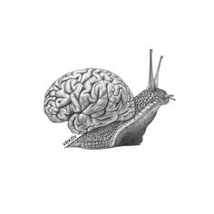 slow thinking #drawing #illustration #art #illustrator #pencil #sketch #smart #slow #thinking #genious #brain #snail