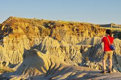 How to get the most out of Dinosaur Provincial Park