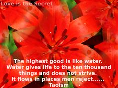 The highest good is like water.  Water gives life to the ten thousand things and does not strive.  It flows in places men reject and so is like the Tao.  Taoism Source:http://www.katinkahesselink.net/other/tao-te-ching-quotes.html