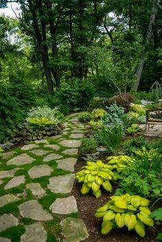 Amazing  Love the flagstone with the moss or thyme growing between.