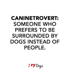 ...but only my dogs, and only when they're not being complete turds.