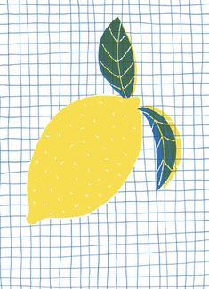 lemon, design, print, pattern, graph paper, illustration, screen print, simple, mark making, drawing, fruit, food