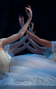 Rosalie O'Connor Photography - Ballet, балет, Ballett, Bailarina, Ballerina, Балерина, Ballarina, Dancer, Dance, Danse, Danza, Танцуйте, Dancing