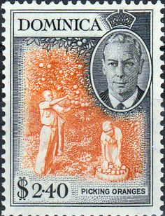 Dominica 1951 King George VI SG 130 Fine Used Scott 132 Other Dominica Stamps HERE