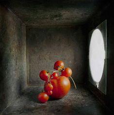 David Halliday  Cherry Tomatoes