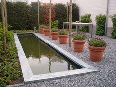 Een hele strakke vijver in een minimalistische tuin. De klant voegde de potten met planten toe, omdat het wel heel leeg was. www.houdijkstijltuinen.nl