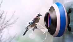 3D Printed Bird Nests  http://www.mymodernmet.com/profiles/blogs/printednest-3d-printed-birds-nest