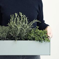 Plant box from ferm LIVING