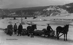 Tømmerkjoring Vuku Nord-Trøndelag ca1916