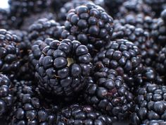 Eating more fruits — particularly berries, apples and pears — and nonstarchy vegetables, like soybeans and cauliflower, may help you lose weight over the long term, a new study suggests Thornless Blackberries, Growing Blackberries, Blackberry Plants, Blackberry Bush, Berry Picking, Fast Growing Trees, Vegetable Nutrition, Health, Backgrounds