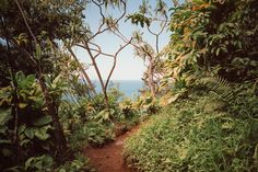 Dreamlike Pictures of Hawaï Islands by Cody Cobb – Fubiz Media