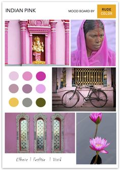 Inspired by the shades of the lotus, Indian Pink ranges from the bright 'rani pink' (the queen's pink) to pastel tones. Making an appearanc. Thea Queen, India People, Ranges, Lotus, Palette, Pastel, Shades, Bright, Culture