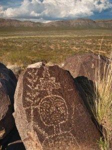 """Tularosa, southern New Mexico (""""Jornada"""")"""