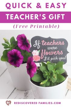 Do you need a quick homemade teacher's gift? Here's a simple DIY thank you gift teachers will enjoy all summer. Pair a potted plant with these free printable tags. It's the perfect way to express your appreciation at the end of the year. Homemade Teacher Gifts, Easy Teacher Gifts, Teacher Christmas Gifts, Easy Diy Gifts, Simple Gifts, Homemade Gifts, Simple Diy, Free Printable Tags, Teacher Appreciation Week