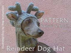 Knit this unique Reindeer Dog Hat, using the FancyPetPatts pattern. This is not only a pattern, this is A TUTORIAL on how to knit a reindeer dog hat in two different sizes: XS – fits dogs with head girth (above the eyes) approx. 25 cm (10 inches) S – fits dogs with head girth (above