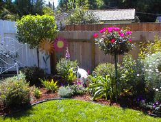Sparky likes this garden too~~~look into making these Topiaries~~~sorry I gave away my iron bed~~~