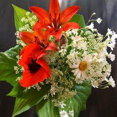 Luonnonkukkakimppuja ei voi vastustaa...? #luonnonkukat #kukkakimppu #luonto #itetein #floristi (amatööri) #futuremarja #järvenpää