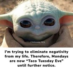 Yoda Pictures, Yoda Images, Funny Images, Funny Pictures, Cute Funny Animals, Funny Cute, Hilarious, Yoda Quotes, Live Love Life