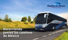 Omnibus de México | Confianza en el Camino