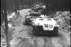 "A SdKfz  251/1 leads a column of Panther V Ausf G tanks with the SS Panzer Corps 5 SS Panzer Division ""Wiking"" Hungary 1944/45"