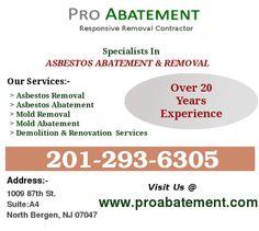 Pro Abatement