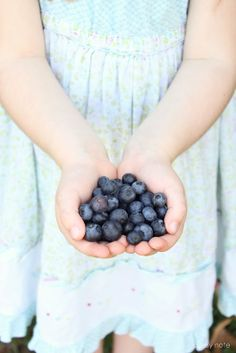 Treasures To Hold ~ blueberries