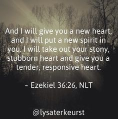 A new year. A new tenderness. A new heart.